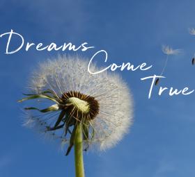 dreams-come-true-square