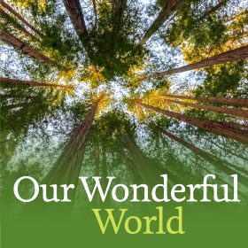 ourwonderfulworld